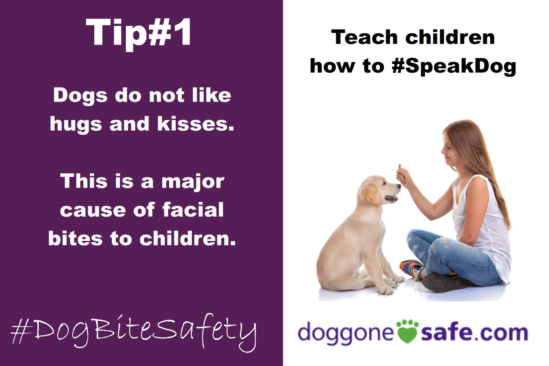 Dog Detective | Dog body language for kids